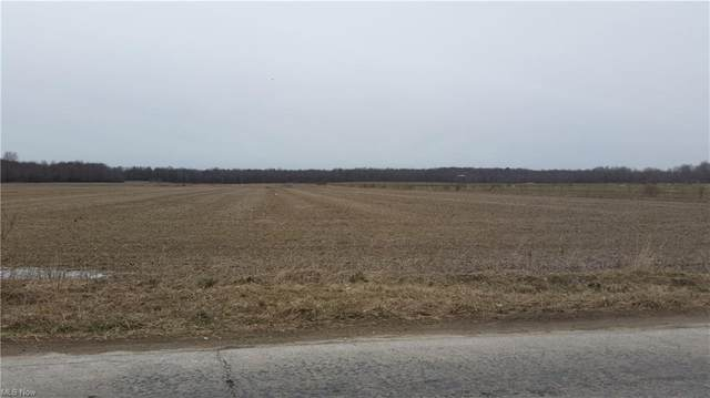 Hilldom Road, Kingsville, OH 44048 (MLS #4250125) :: The Holden Agency
