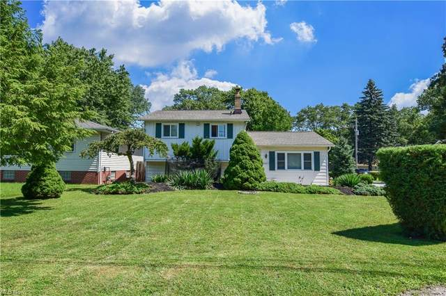 36273 S Riverview Road, Eastlake, OH 44095 (MLS #4250376) :: Krch Realty