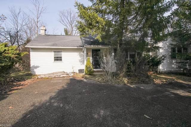 29511 Cedar Road, Mayfield Heights, OH 44124 (MLS #4250548) :: Keller Williams Legacy Group Realty