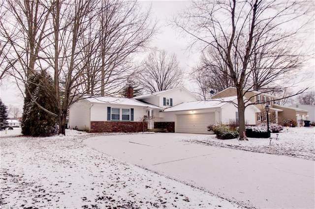 3810 Bellwood, Warren, OH 44484 (MLS #4250607) :: The Holly Ritchie Team