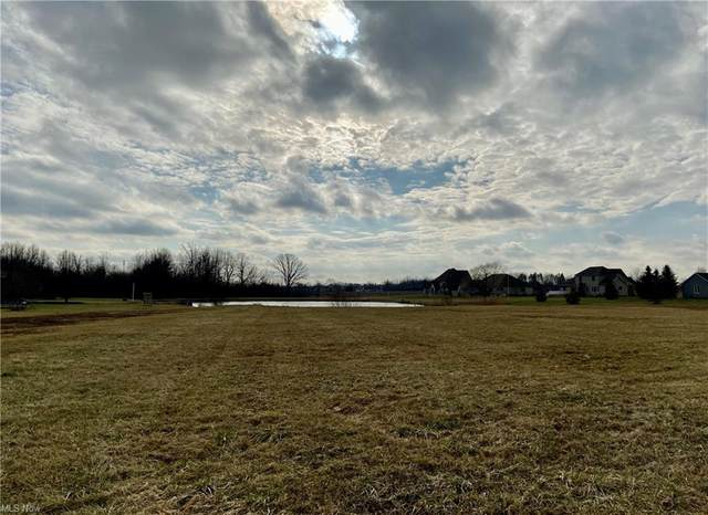 Brianna Way NW, Warren, OH 44481 (MLS #4250934) :: The Holly Ritchie Team