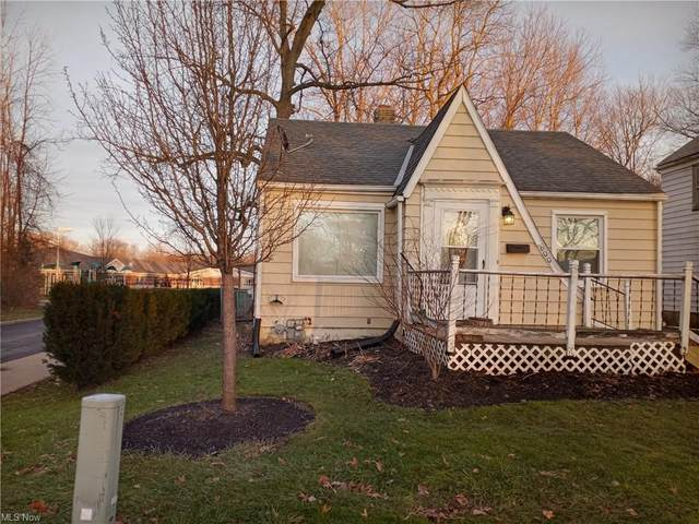 600 Pleasant Avenue, Painesville, OH 44077 (MLS #4250988) :: Keller Williams Legacy Group Realty
