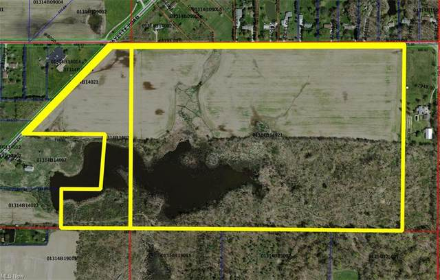 V/L Lafayette Road, Lodi, OH 44254 (MLS #4251580) :: The Holden Agency