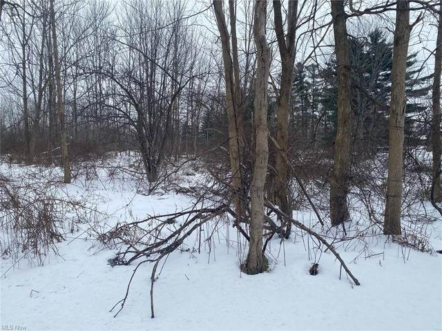 Chillicothe Road, Kirtland, OH 44094 (MLS #4251736) :: The Holden Agency