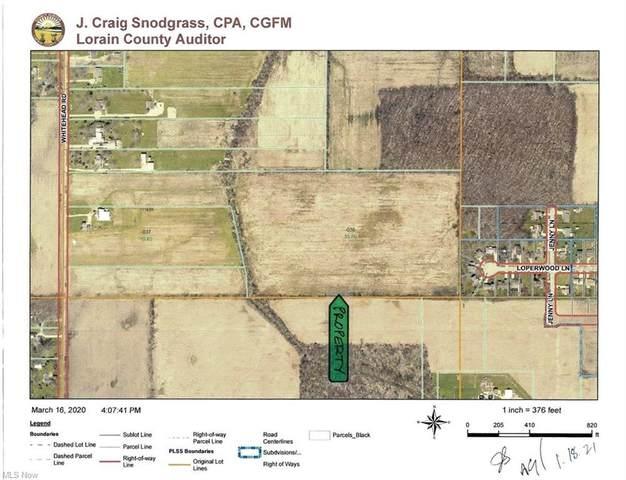 Whitehead Road, Lagrange, OH 44050 (MLS #4251895) :: The Holden Agency
