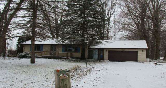 11760 Green Beaver Road, Canfield, OH 44406 (MLS #4251959) :: The Holden Agency