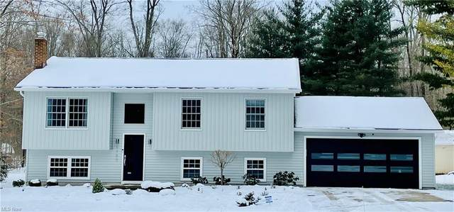 9189 Old Meadow Drive, Chagrin Falls, OH 44023 (MLS #4251999) :: The Holden Agency