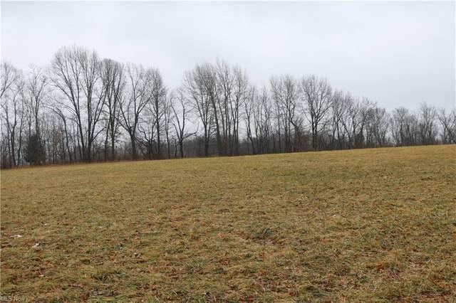 County Road 292, Millersburg, OH 44654 (MLS #4252052) :: The Art of Real Estate