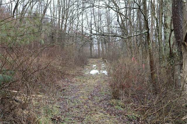County Rd 22, Glenmont, OH 44628 (MLS #4252100) :: RE/MAX Trends Realty