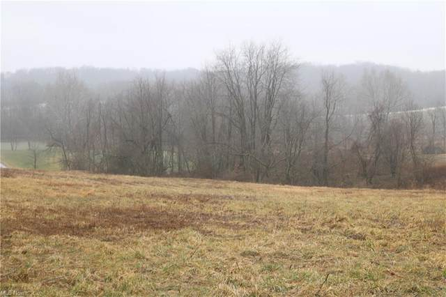 Township Road 502, Millersburg, OH 44654 (MLS #4252104) :: RE/MAX Trends Realty