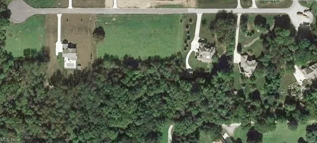 1568 Beacon Hill Drive, Wadsworth, OH 44281 (MLS #4252327) :: Keller Williams Chervenic Realty