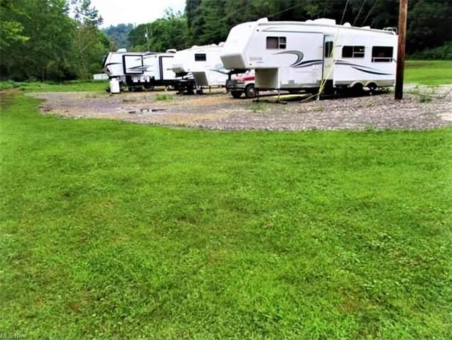 55190 Wegee Road, Shadyside, OH 43947 (MLS #4252722) :: Tammy Grogan and Associates at Cutler Real Estate