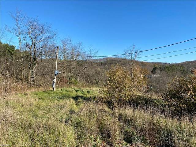 47084 Sidehill Road, East Liverpool, OH 43920 (MLS #4252842) :: Krch Realty