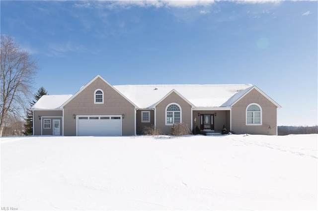 45111 Lude Road, Belmont, OH 43718 (MLS #4253526) :: Krch Realty
