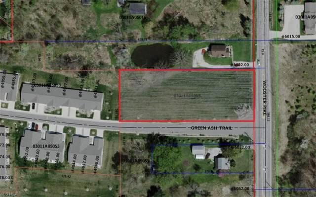 Wooster Pike, Medina, OH 44256 (MLS #4253684) :: Tammy Grogan and Associates at Keller Williams Chervenic Realty