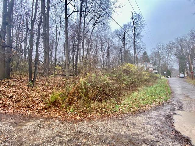 Moore Street, Zanesville, OH 43701 (MLS #4253764) :: TG Real Estate
