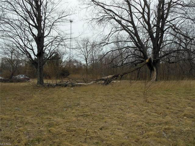 VL N Ridge Road, Madison, OH 44057 (MLS #4253790) :: Keller Williams Chervenic Realty