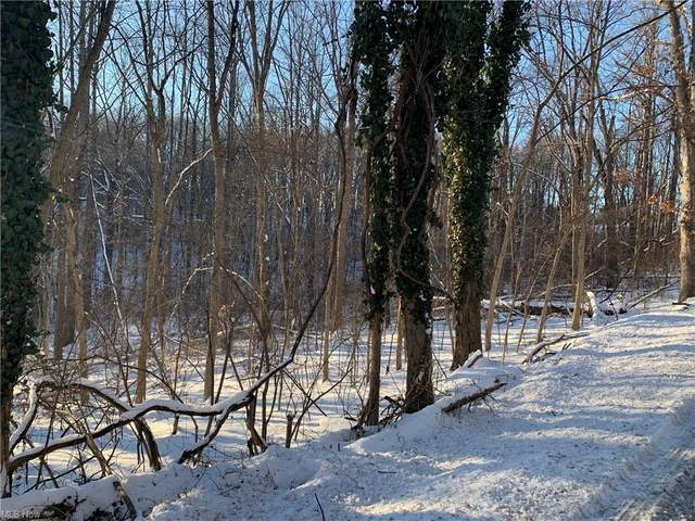0 Moravian Trail Road, Deersville, OH 44693 (MLS #4253899) :: Tammy Grogan and Associates at Cutler Real Estate