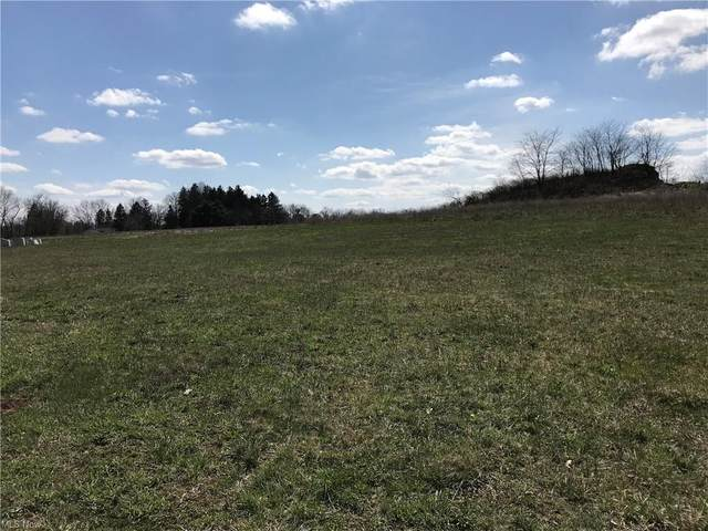 Settlers Trace Lot #9351, Wooster, OH 44691 (MLS #4254440) :: Keller Williams Chervenic Realty