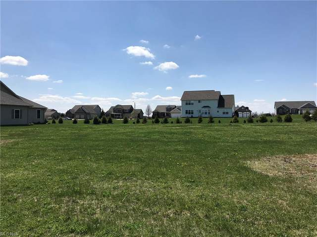 Spring Brook Lot #9218, Wooster, OH 44691 (MLS #4254462) :: Keller Williams Chervenic Realty