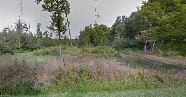 8442 Ward North Road, Kinsman, OH 44428 (MLS #4254632) :: Krch Realty