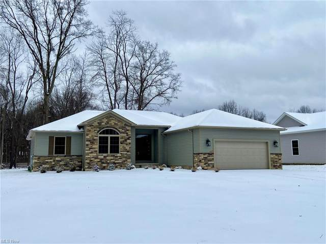 101 Muirfield Drive, Howland, OH 44484 (MLS #4254780) :: Krch Realty