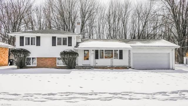 23208 Vera Street, Warrensville Heights, OH 44128 (MLS #4255449) :: The Holden Agency