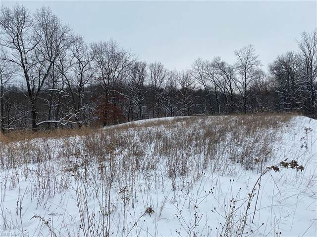 2150 Moody Hollow Road, Blue Rock, OH 43720 (MLS #4256009) :: Krch Realty