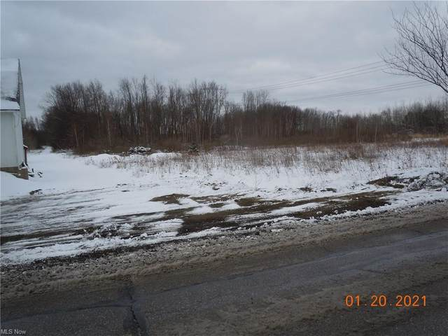 VL Main Street, Perry, OH 44081 (MLS #4256202) :: Krch Realty