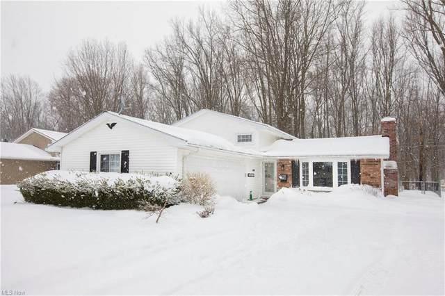 32613 Belle Road, Avon Lake, OH 44012 (MLS #4256466) :: The Art of Real Estate
