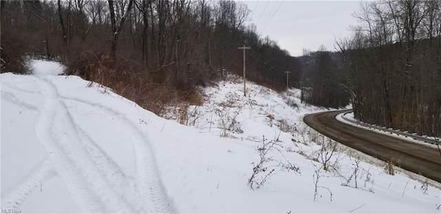 Gilmore Road SE, Gnadenhutten, OH 44629 (MLS #4256488) :: Keller Williams Legacy Group Realty