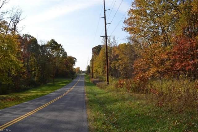 8640 Harris Road, Lodi, OH 44254 (MLS #4256816) :: Keller Williams Chervenic Realty