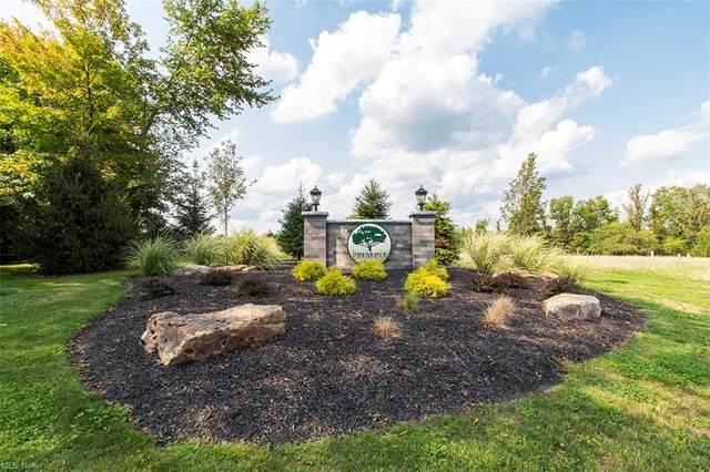 4825 Stockbridge Drive, Medina, OH 44256 (MLS #4256915) :: The Holden Agency