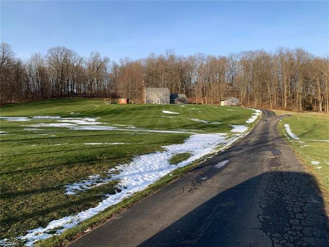 5001 Township Road 376, Millersburg, OH 44654 (MLS #4257011) :: The Holden Agency