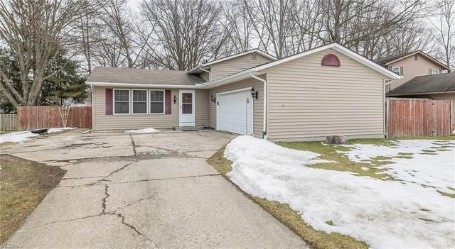 6011 Denise Drive, North Ridgeville, OH 44039 (MLS #4257895) :: The Art of Real Estate