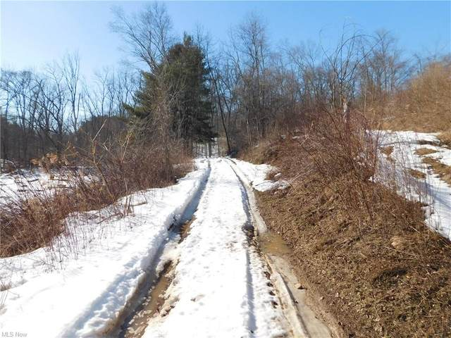 7127 Township Road 466, Lakeville, OH 44638 (MLS #4257998) :: The Holden Agency