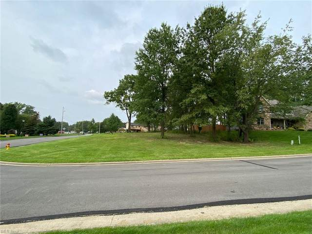 2432 Shepherds Ridge, Poland, OH 44514 (MLS #4258378) :: The Holly Ritchie Team