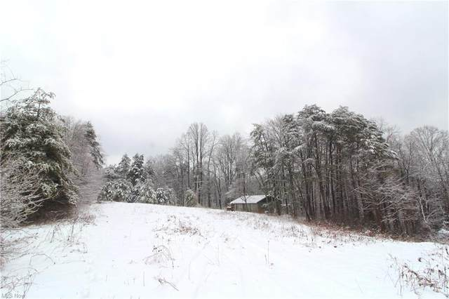 Township Road 467, Sardis, OH 43946 (MLS #4258395) :: Krch Realty