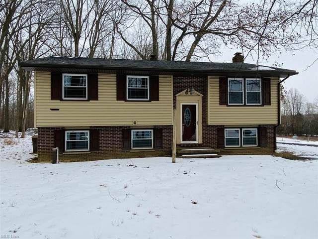 9325 Gilbert Road, Ravenna, OH 44266 (MLS #4258478) :: The Holly Ritchie Team