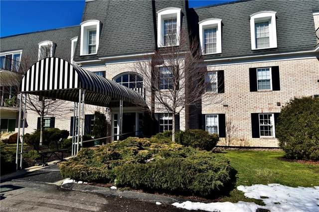 1851 King James #220, Westlake, OH 44145 (MLS #4258480) :: The Art of Real Estate