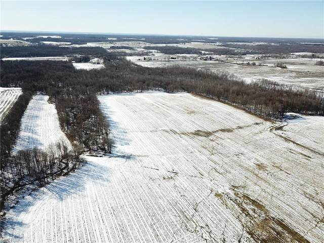 Stanhope Kelloggsville Road, Andover, OH 44003 (MLS #4258603) :: The Holden Agency