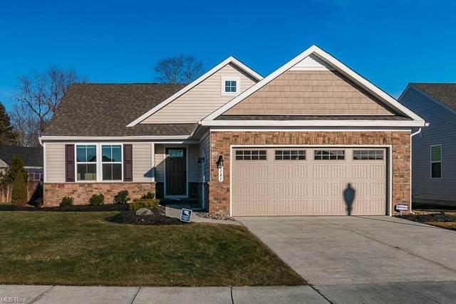 4141 Hidden Village Drive, Perry, OH 44081 (MLS #4258619) :: The Crockett Team, Howard Hanna