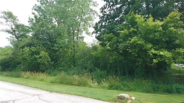 VL Palomino Trail, Kirtland, OH 44094 (MLS #4258927) :: The Crockett Team, Howard Hanna