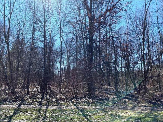 Lot #60 Parkview Drive, Columbiana, OH 44408 (MLS #4259263) :: Keller Williams Legacy Group Realty