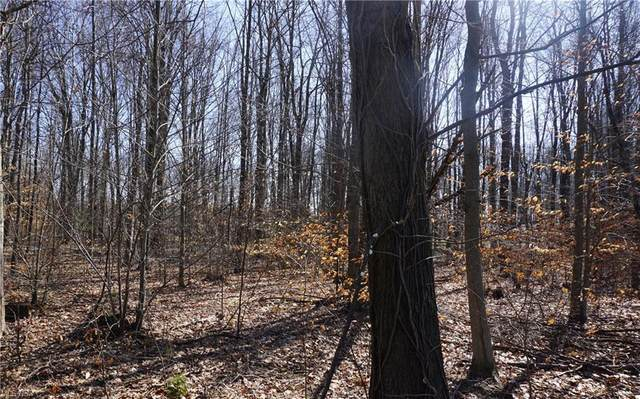 Lot 39 Griffith Road, Ravenna, OH 44266 (MLS #4259798) :: The Art of Real Estate