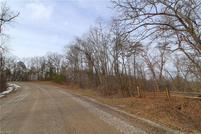 County Rd 9, Newport, OH 45768 (MLS #4259992) :: The Jess Nader Team | RE/MAX Pathway