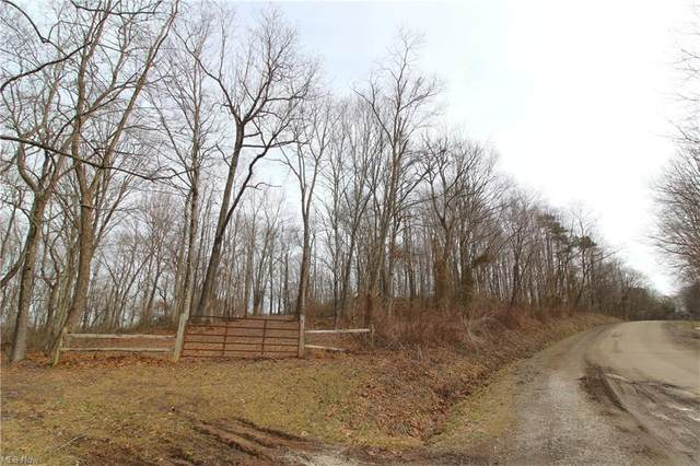 County Rd 9, Newport, OH 45768 (MLS #4260005) :: The Jess Nader Team | RE/MAX Pathway