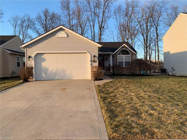 37276 Freedom Avenue, North Ridgeville, OH 44039 (MLS #4260066) :: The Art of Real Estate