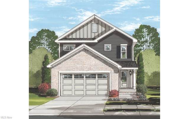V/L N Pleasant Street, Oberlin, OH 44074 (MLS #4260345) :: The Art of Real Estate