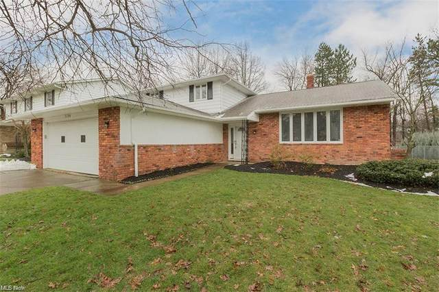 5194 Graham Drive, Lyndhurst, OH 44124 (MLS #4260534) :: The Art of Real Estate
